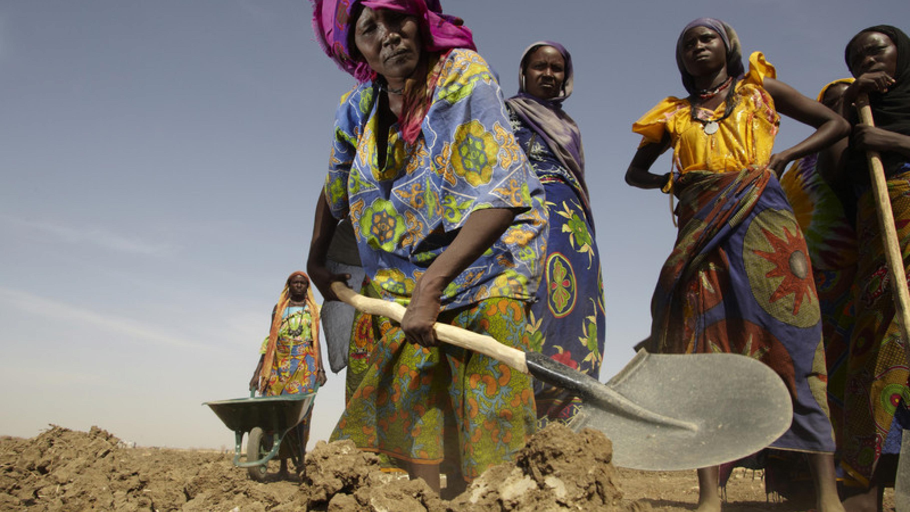 """Frauen aus dem Dorf Labado im Tschad graben innerhalb eines Oxfam-""""Cash-for-Work""""-Programms Bewässerungskanäle für ihre Felder. Von dem Geld, das sie damit verdienen, kaufen sie dringend benötigte Nahrungsmittel."""
