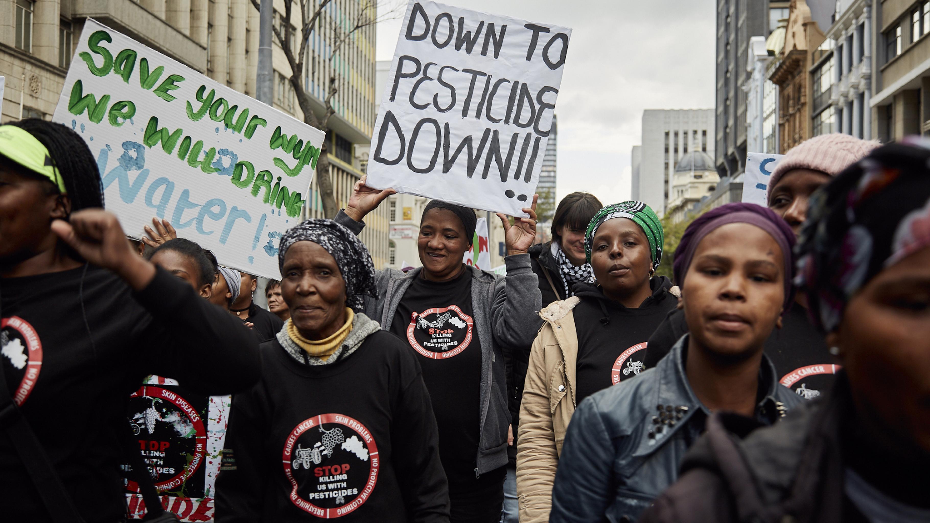 Nieder mit den Pestiziden: Protestmarsch der Weinarbeiterinnen in Kapstadt