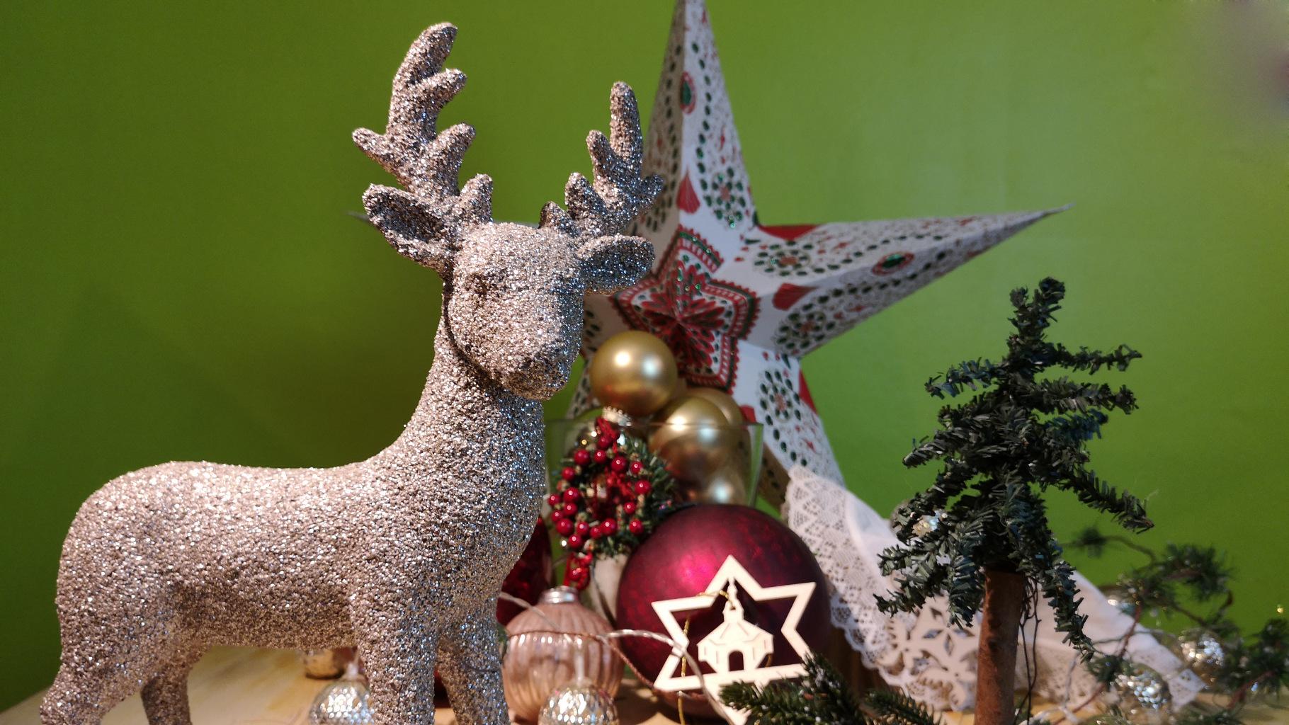 Weihnachten im Oxfam Shop